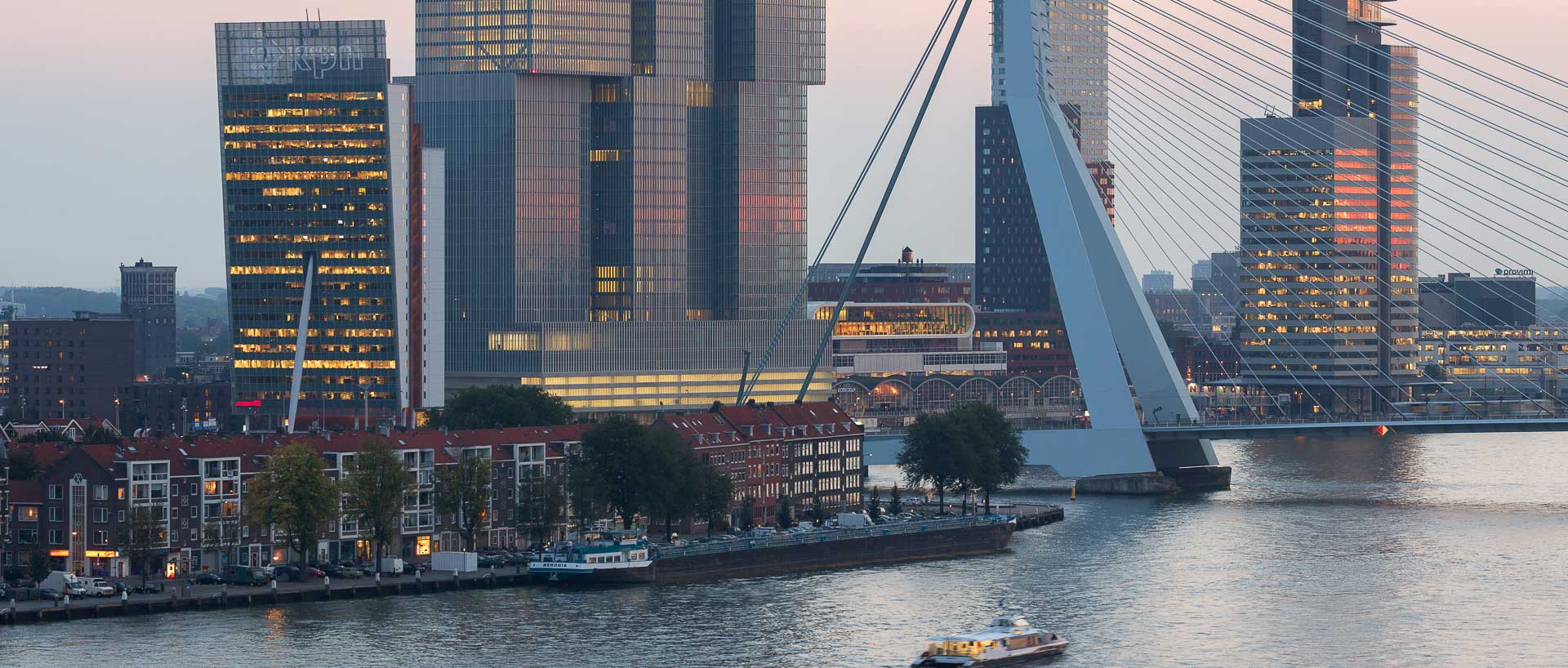 Business in Rotterdam